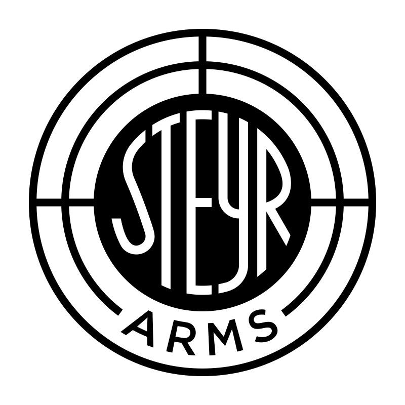 Steyr Mann